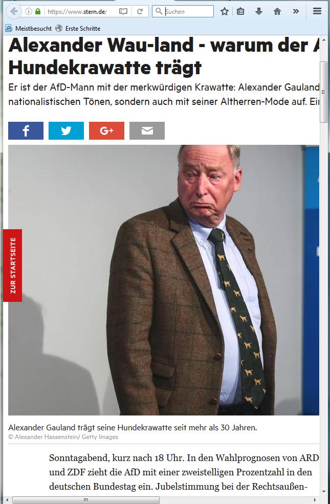 Sogar das linke Magazin Stern scheint vom Stil Alexander Gaulands angetan. Der Stern widmete seinem Kleidungsstil einen eigenen Artikel... (Bildschirmfotoausriß)